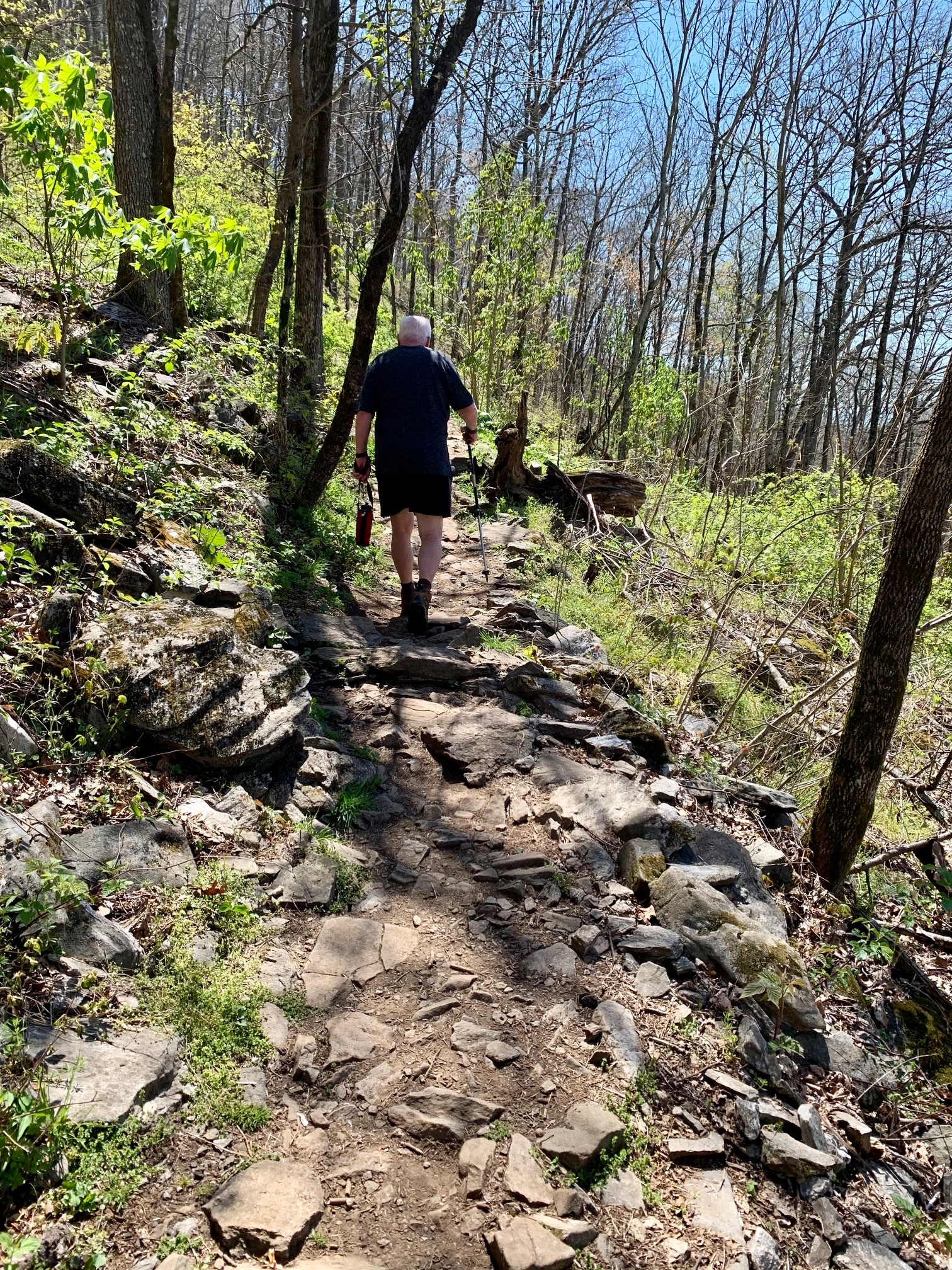 Bearwallow Trails with rocks and ruts climbing up
