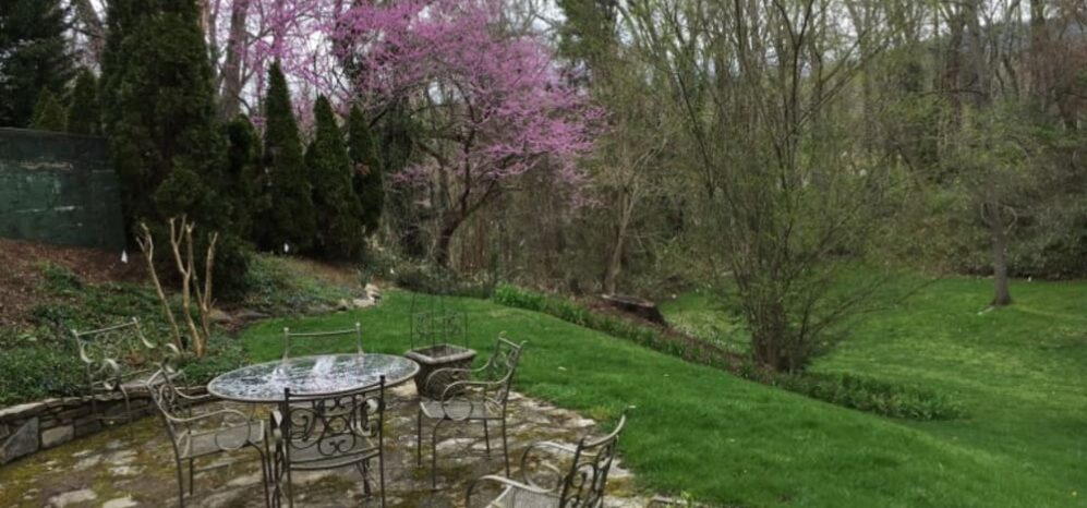 Spring Brings New Faces, Pinecrest Bed & Breakfast